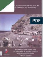 Historia Glacial de Dos Coniferas Milenarias_ Villagrán y Roig