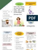 Leaflet Maternitas Anemia