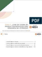 Tema 5 Lss en Productos-servicios Con Demanda No Estándar
