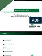 Eliezer Flores - Representação de Dados.pdf