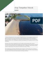 Keadilan Ekologi Tumpahan Minyak Teluk Balikpapan