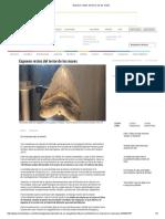Exponen restos del terror de los mares.pdf