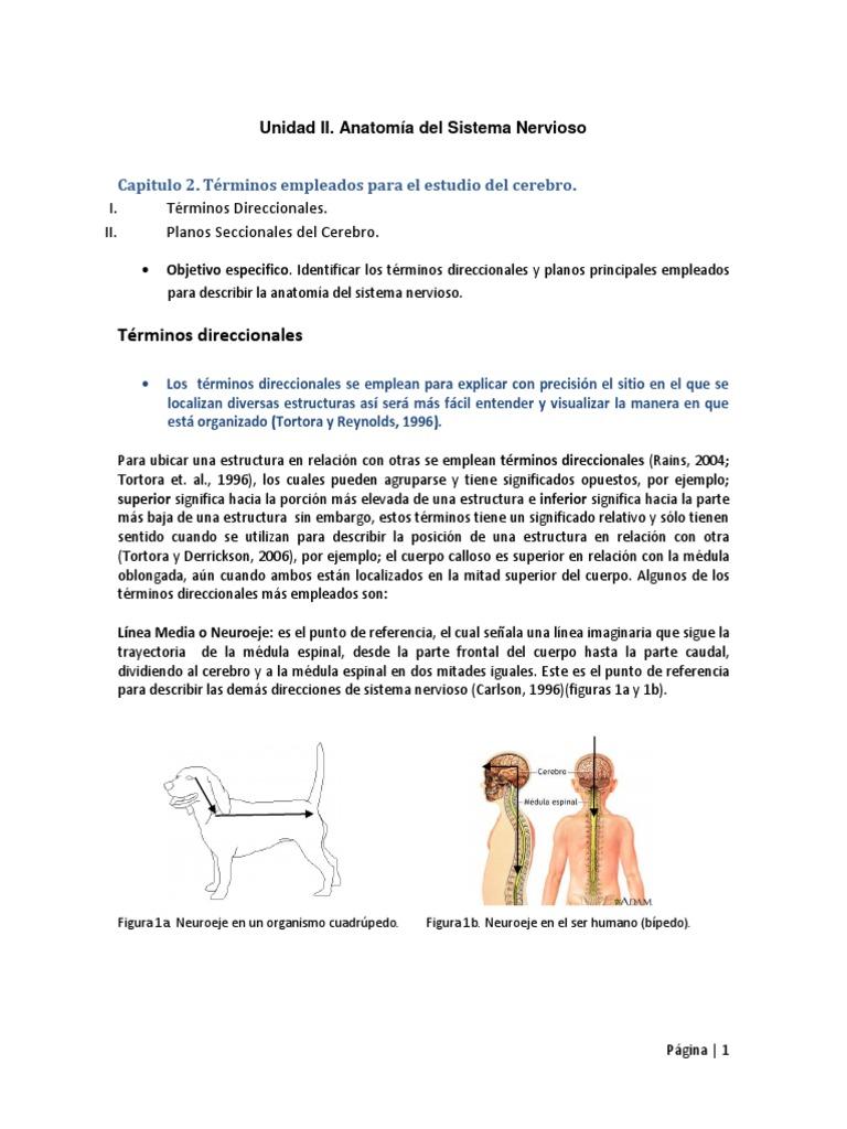 Capitulo 2 Unidad 2.pdf