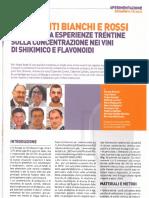IT L'ENOLOGO Resistenti Bianchi e Rossi