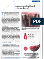 AU - Wine & Viticulture Journal Should Growers Worry More About Trunk Diseases Than They Do Phylloxera