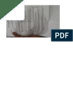 1779_mfcMXU.jpg.pdf