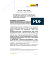 11. Cultura de Seguridad.pdf