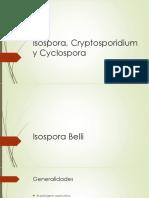 4.- Isospora, Cryptosporidium y Cyclospora