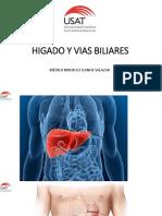Higado y Vias Biliares Oficial