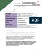 plantilla 2competencias- fisiologia-medicina gladiz choque