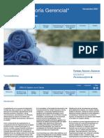boletin_asesoria_gerencial.pdf