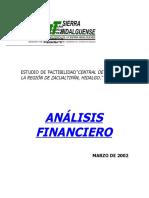 analisis_financiero_hidalgo.doc