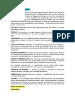 PUENTES TERMINOLOGÍA.docx