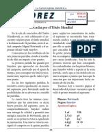 16- columna.pdf