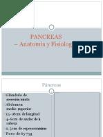 Pancreas Anatomia Expo