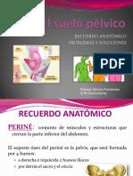 el-suelo-pecc81lvico.pdf