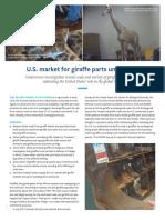 Giraffe Report HSI HSUS 082318