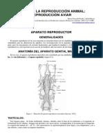 10-reproduccion_aviar AVES.pdf