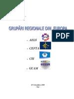 Grupari Regionale Din Europa 1