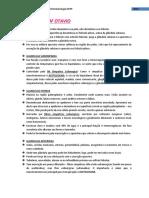 212393492-resumo-plantao1