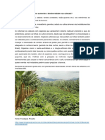 Como Aumentar a Biodiversidade Nos Cafezais