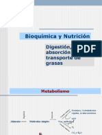Digestion absorcion metabolismo lipoporoteinas copia.ppt