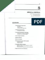 MdulaEspinal_ToralesCodasFretes.pdf