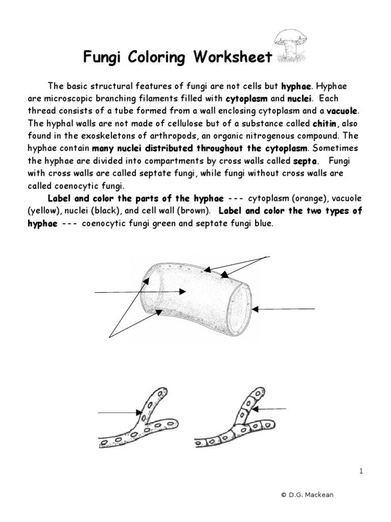 Pictures Fungi Coloring Worksheet Beatlesblogcarnival – Fungi Worksheet