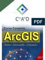 ArcGIS 10.3.pdf