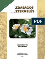 Bees Magyar méhészet