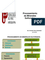 PROCESAMIENTO-UNP.ppt