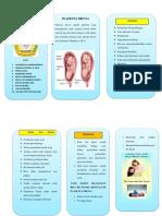 Leaflet Plasenta Previa