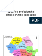 Specificul Profesional Al Diferitelor Zone Geografice