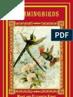 Hummingbirds Sample