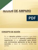 Partes y Figuras Procesales Del Amparo