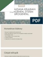 Tatalaksana Kelainan Kongenital System Urogenital