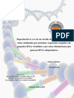 MINOIA - Degradación in vivo de un viroide de replicación nuclear_ rutas catalizadas por proteína....pdf