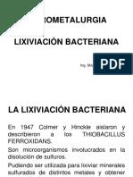 Presentación Lixiviación Bacteriana Tiepeadooooooo