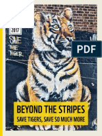 Rapport_beyond_the_stripes.pdf