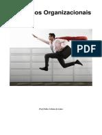 Processos_Organizacionais_1.pdf