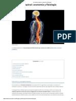La Médula Espinal_ Anatomía y Fisiología