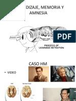 APRENDIZAJE, MEMORIA Y AMNESIA.pptx