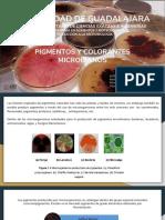 Pigmentos y Colorantes Microbianos