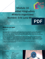 Luna Morales Erik M14S1 Materia Organizada