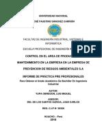 INFORME-PRACTICAS- LUIS.docx