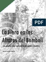 La Flora en las Alturas del Bombolí por David Coello