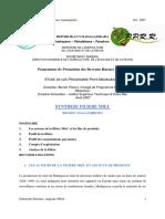 synthèse filière miel madagascar 2007.pdf