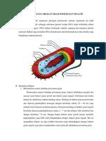Bakteri Batang Obligat Gram Positif Dan Negatif_(2)