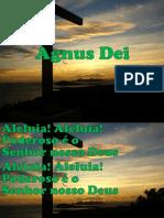 AGNUS DEI.pptx
