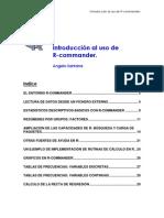 Manual R Commander
